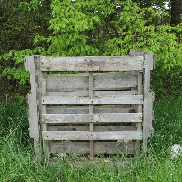 Front view: Outdoor compost bin made with 4 wooden pallets surrounded by grass and trees
