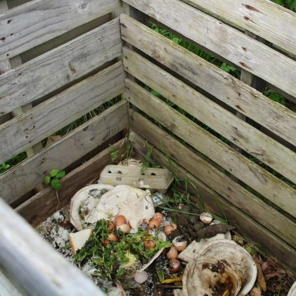 Top view: Wooden pallet compost bin with kitchen scraps and organic material inside