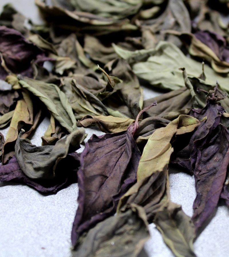 Image of dried basil leaves  | Mama on the Homestead
