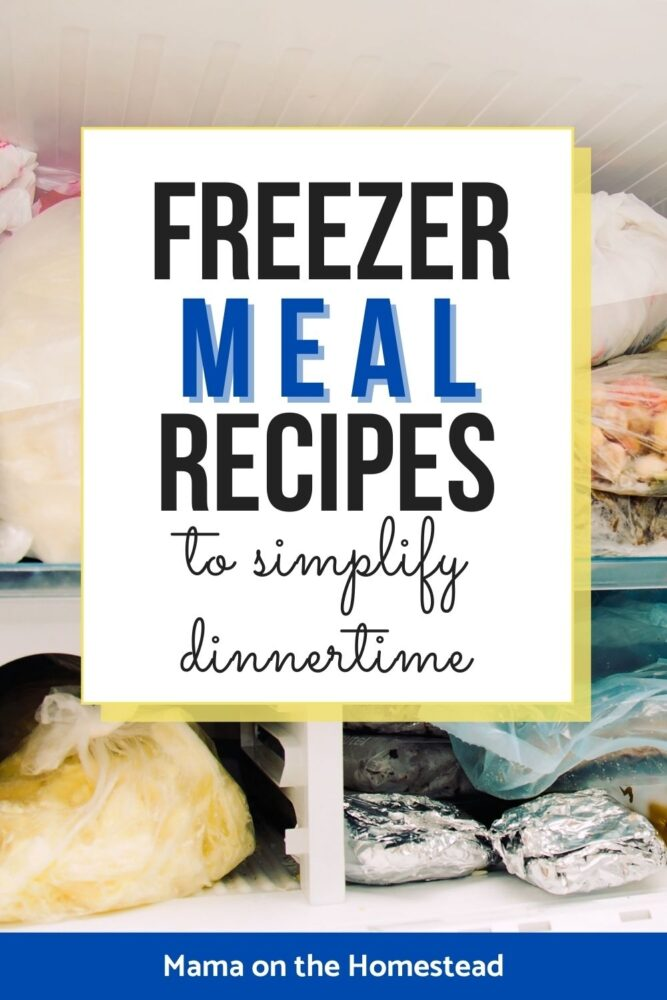 Image of freezer meals packed in freezer | Words: Freezer Meal Recipes to Simplify Dinnertime | Mama on the Homestead