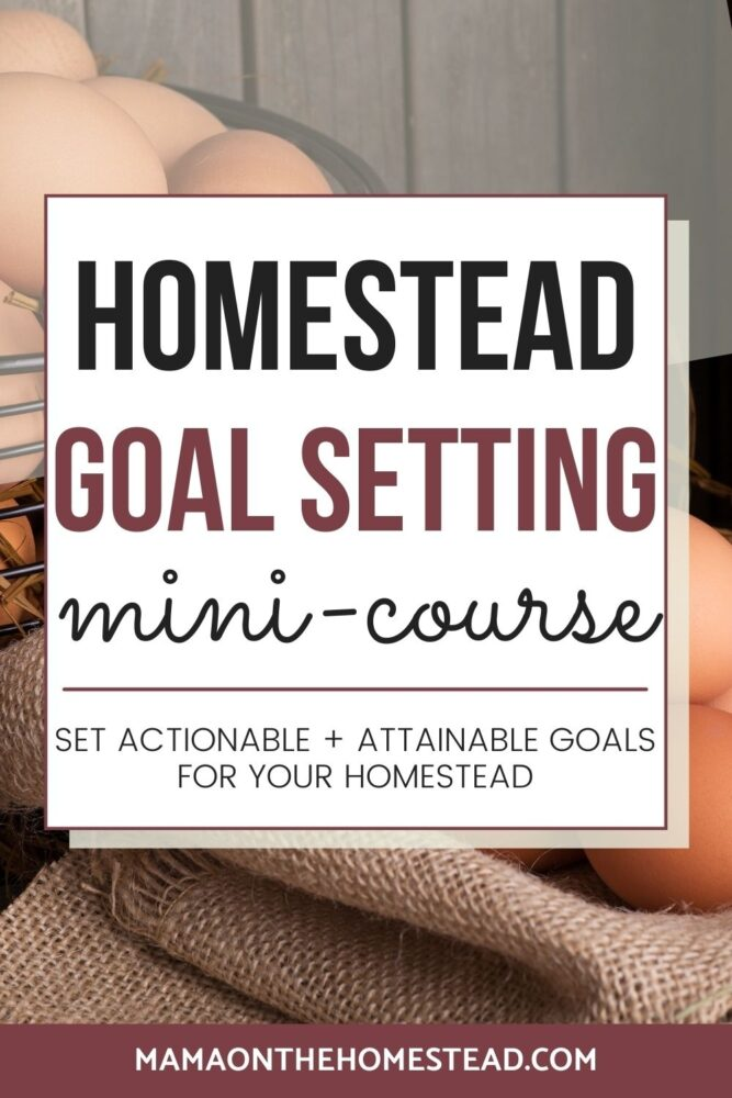 Image of eggs on a burlap sack | Words: Homestead Goal Setting Mini-Course Set actionable + attainable goals for your homestead | Mama on the Homestead