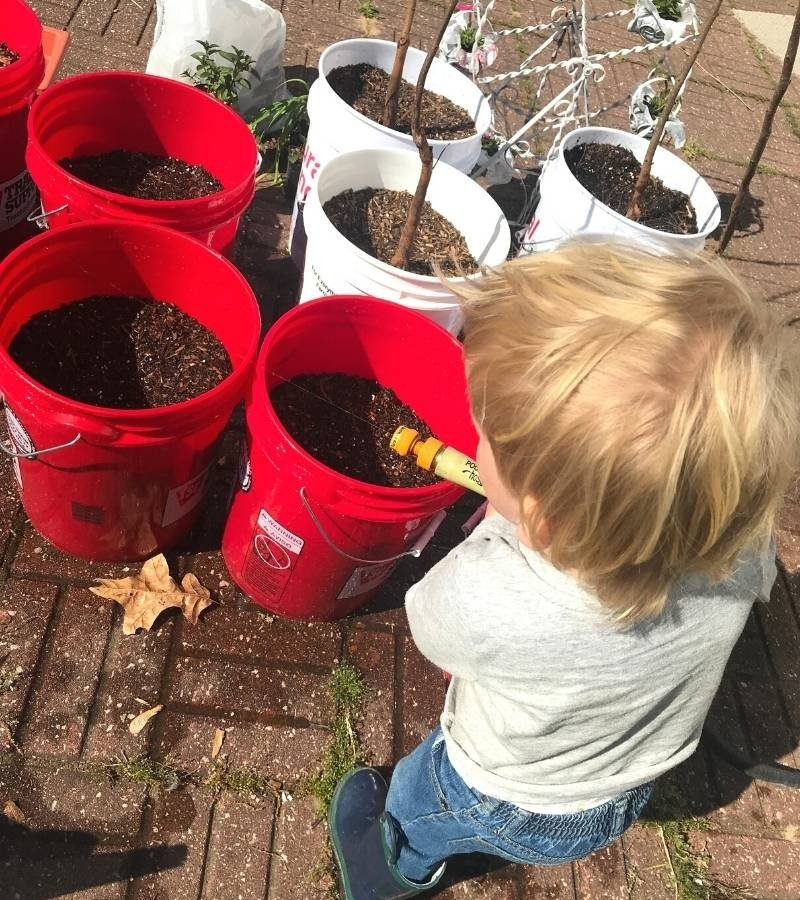 Child watering seeds in 5 gallon buckets | Mama on the Homestead