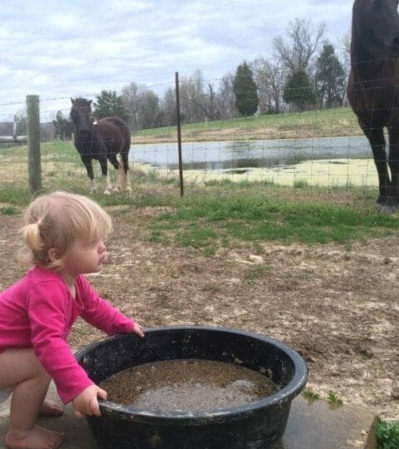 Girl moving a feed pan for horses | Mama on the Homestead