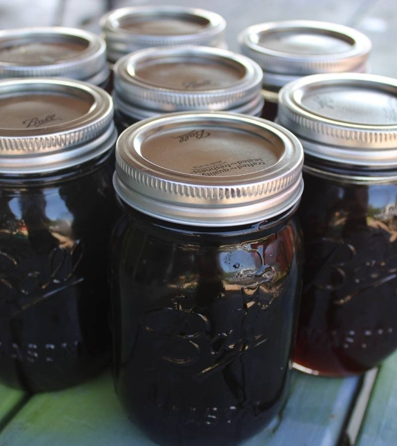 Mason jars filled with fresh honey | Mama on the Homestead