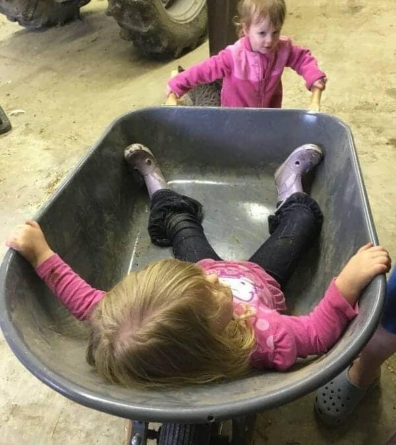 Girl pushing sister in a wheelbarrow | Mama on the Homestead